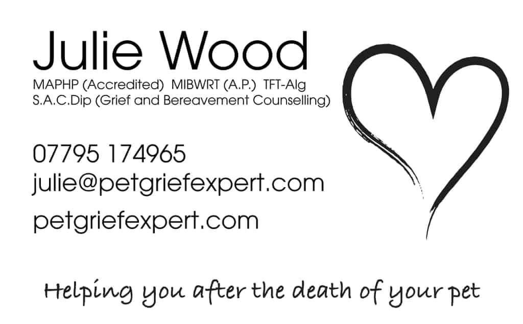 Pet Grief Expert