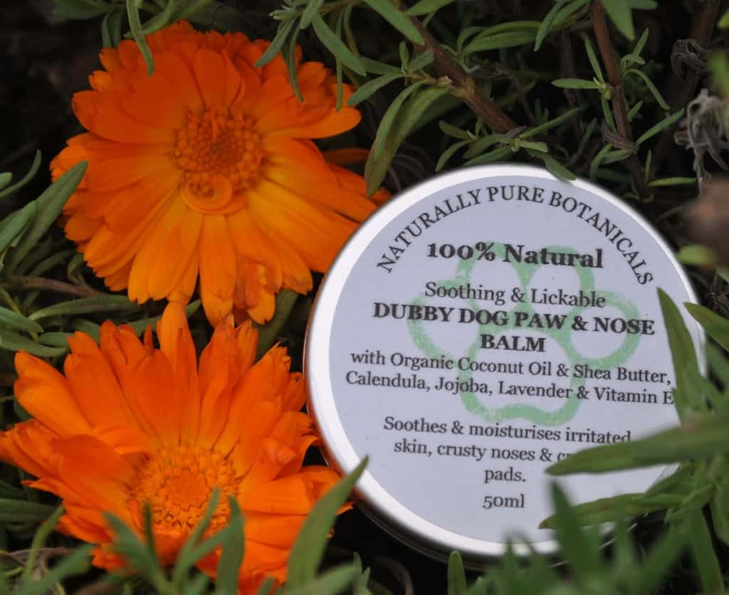Dubby Dog Nose and Paw Balm for Dogs