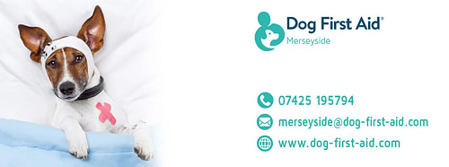 Dog First Aid Courses Merseyside