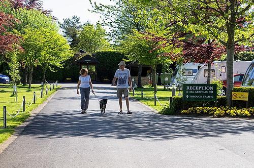 Oakdown Holiday Park Dog Friendly Devon