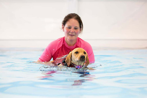 Lucy Pet Carer Canine Hydrotherapy