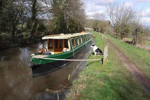 Beacon Park Boats Dog Friendly Brecon