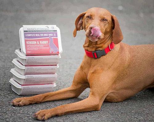 Michies Of Cornwall Artisan Raw Dog Diet