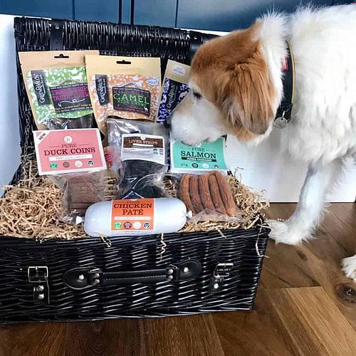 Dog with Gift Hamper