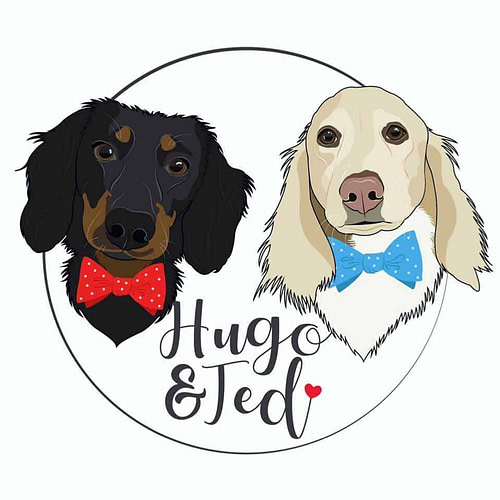 Hugo and Ted