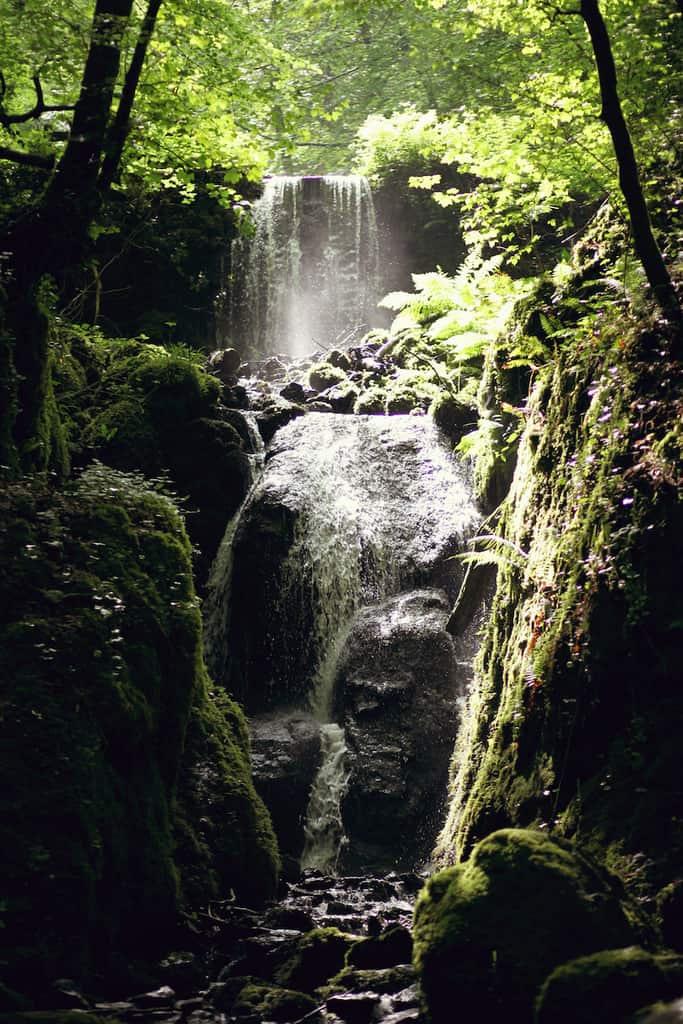 Clampitt Falls Canonteign Falls