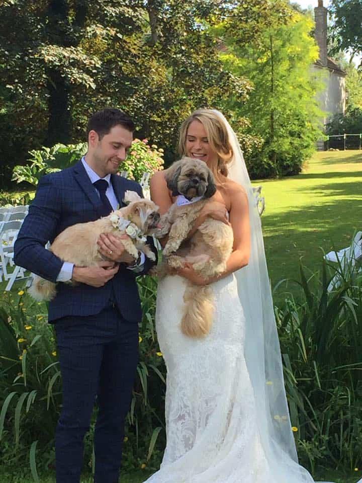 Dog Wedding Chaperone Kent