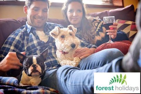 Dog Friendly Forest Holidays Ardgartan Argyll