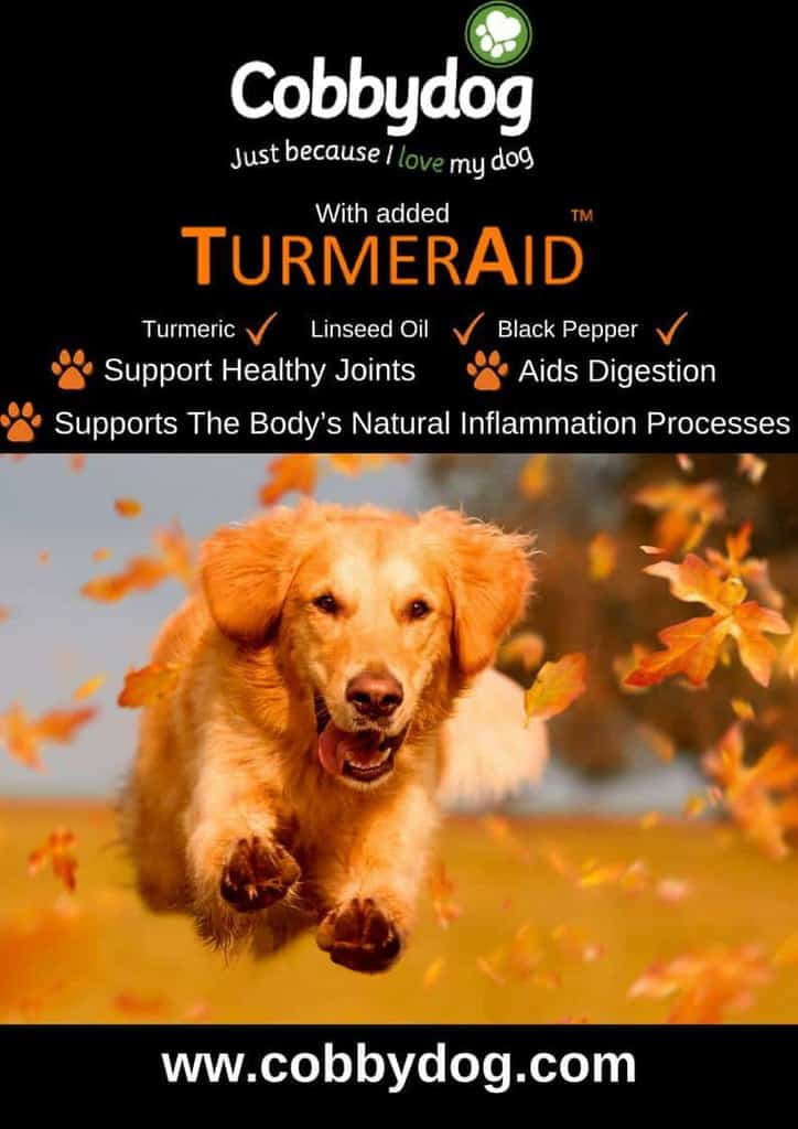 Cobbydog Dog Food with TurmerAid.jpg