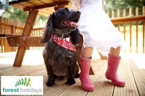 Forest Holidays Dog Friendly Sherwood Forest