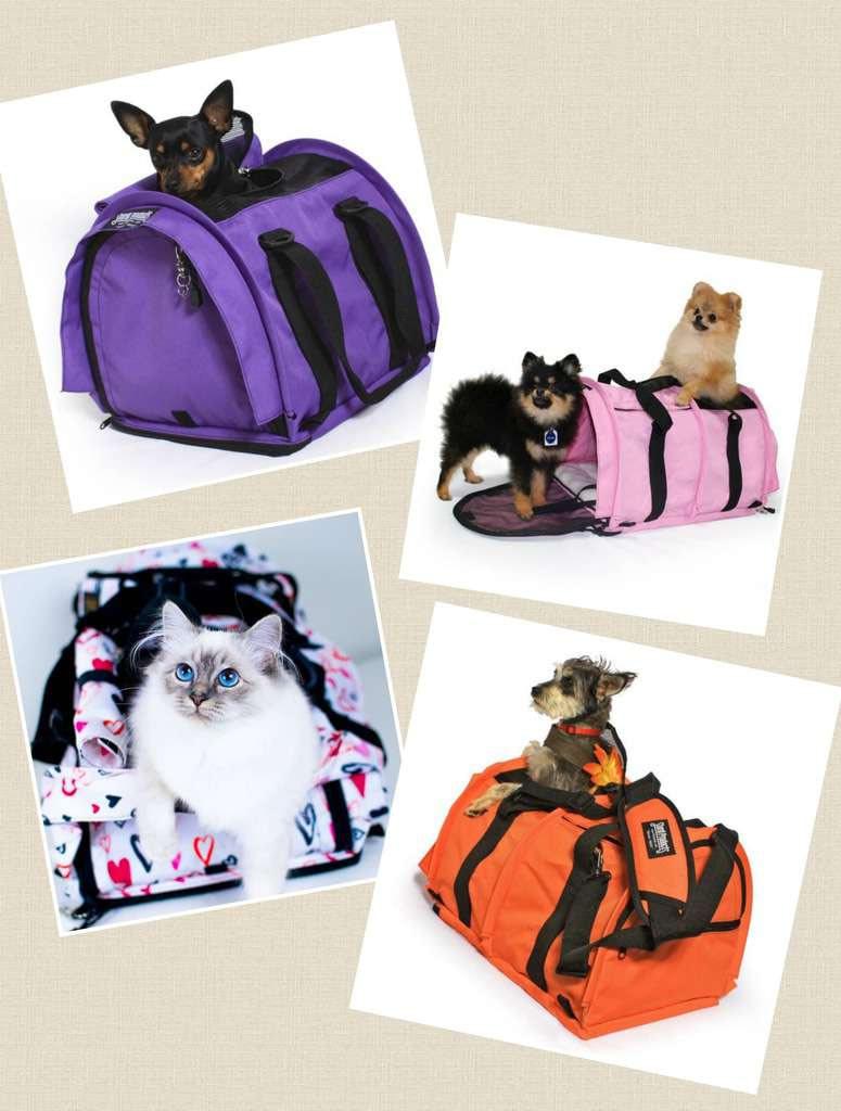 Pet Friendly Express Dog Carriers